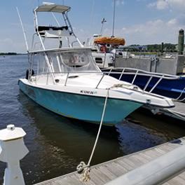 Get Reelin Fishing Charters Southport